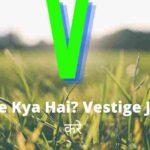 Vestige Kya Hai? Vestige Join कैसे करे और Vestige से पैसे कैसे कमाए